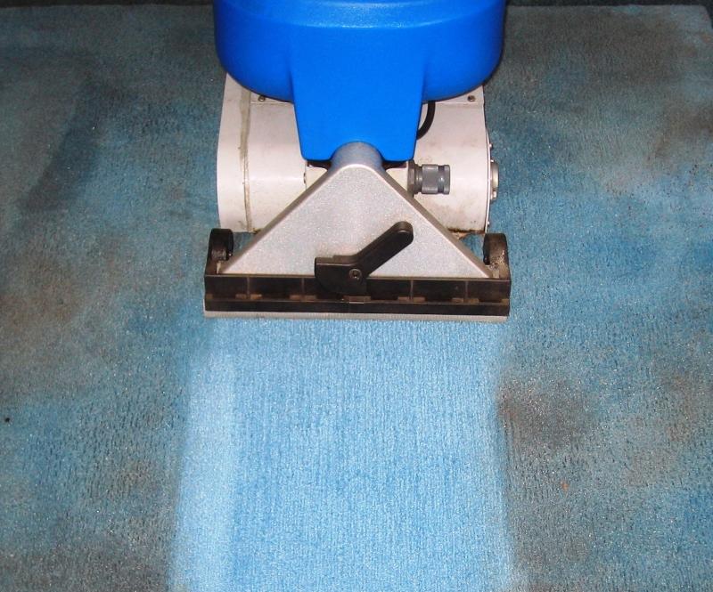 فرش شوی